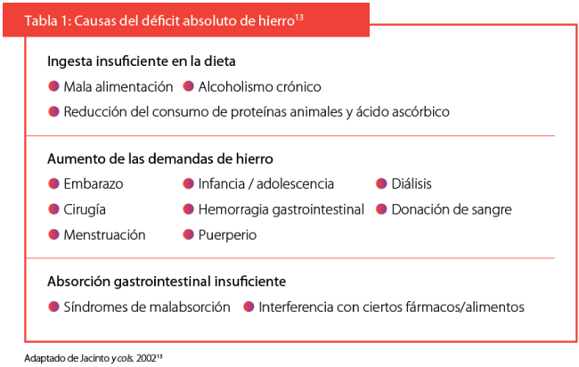 Causas del déficit absoluto de hierro
